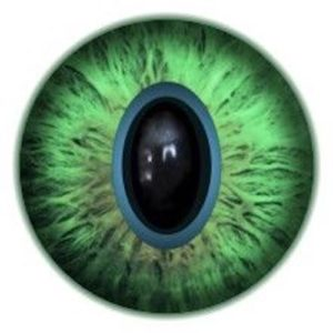 GK 8.1 Cat Eye