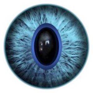 GK8.2 Cat Eye
