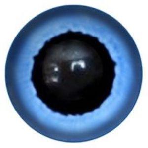 177A Eye