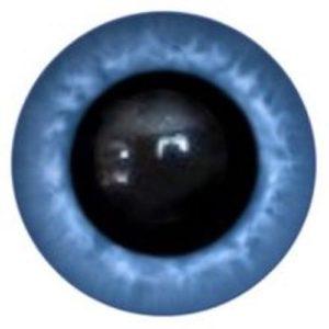 19A Eye