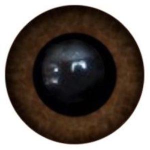 76A Eye