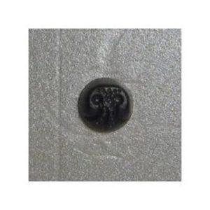 Nose 14 polymer 19mm x19mm